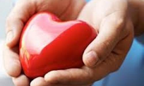чем улучшить кровообращение